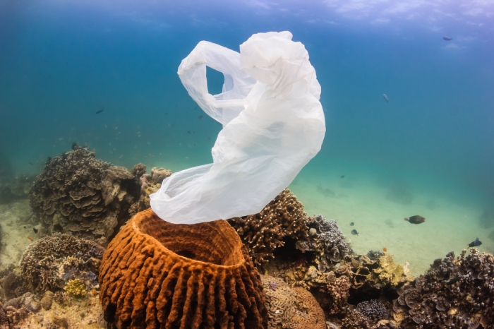 Why biodegradable plastic is not the wonder product you think it is.